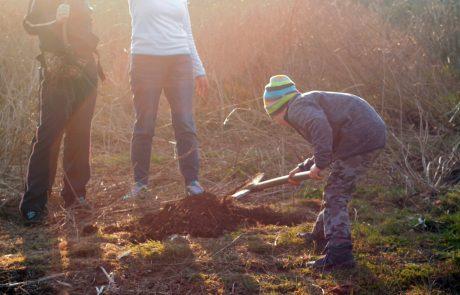 Посади своё дерево - тур выходного дня